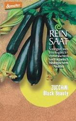 Reinsaat Bio Zucchini Saatgut BLACK BEAUTY