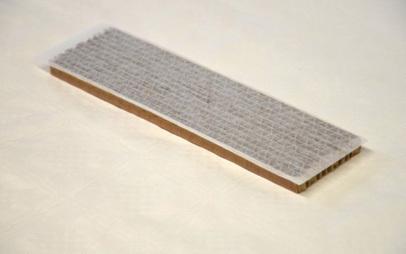 florfliegenlarven gegen blattl use thripse spinnmilben. Black Bedroom Furniture Sets. Home Design Ideas